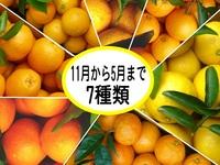 som_furusato_D09_mikantakuhaibin.jpg