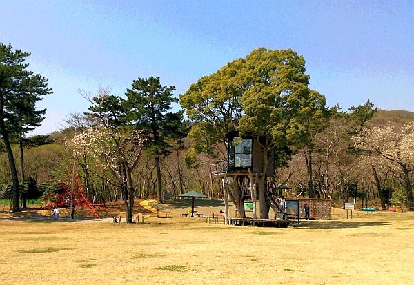 20150703_ShinsuiKouen01.jpg