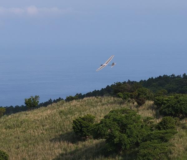 glider02.jpg