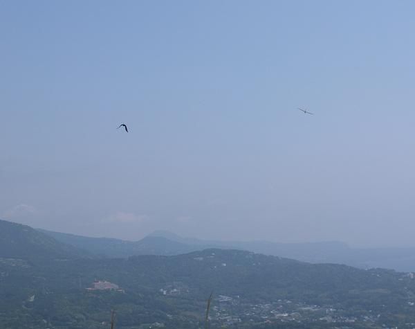 glider04.jpg